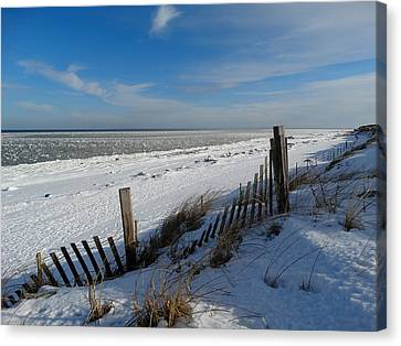 Beach On A Winter Morning Canvas Print