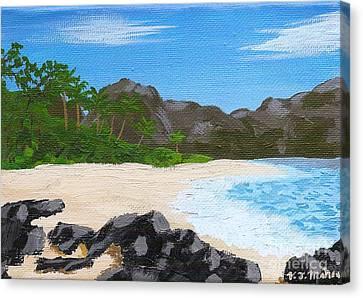 Beach On Helicopter Island Canvas Print by Vicki Maheu