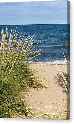 Beach Path Canvas Print by Barbara McMahon