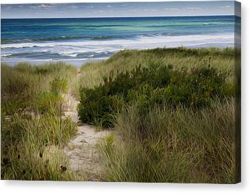 Beach Path Canvas Print by Bill Wakeley