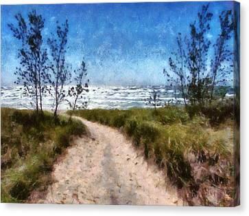 Beach Path Canvas Print by Michelle Calkins