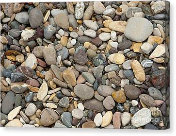 Beach Rocks Canvas Print by Artist and Photographer Laura Wrede