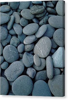 Wa Canvas Print - Beach Rocks On Rialto Beach, Olympic by Panoramic Images
