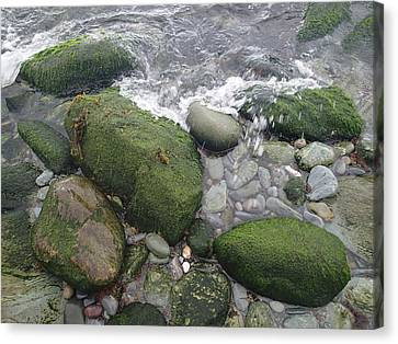 Beach Rocks Canvas Print by Robert Nickologianis