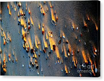 Beach Sand On Sunset Canvas Print by Arie Arik Chen