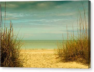 Beach Scene Canvas Print by Carolyn Dalessandro