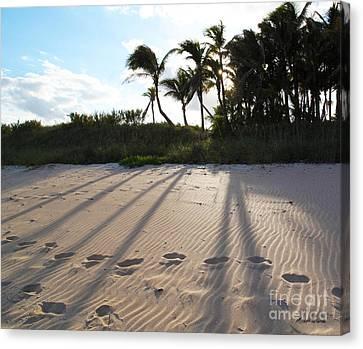 Beach Shadows Canvas Print by Michelle Wiarda