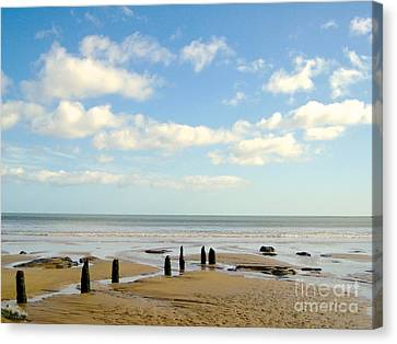 Beach Skies Canvas Print by Suzanne Oesterling