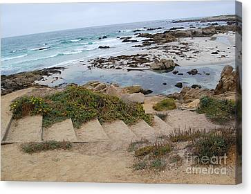 Canvas Print featuring the photograph Descending To The Beach Monterey by Debra Thompson