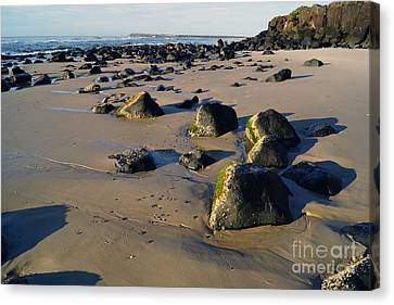 Beach Stones I Canvas Print by Cassandra Buckley