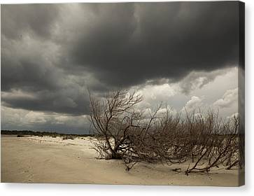 Beach Storm Canvas Print by Barbara Northrup