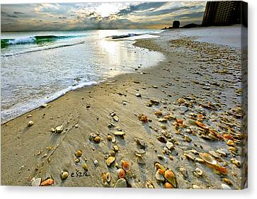 Beach Sunset And Seashells Canvas Print