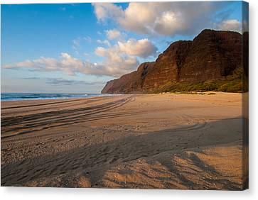 Beach Tracks Canvas Print
