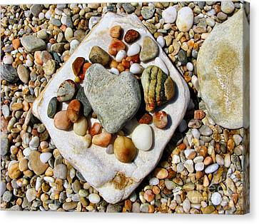 Beach Treasures Canvas Print by Daliana Pacuraru