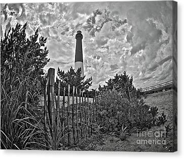 Beach View Of Barney In Black And White Canvas Print by Mark Miller
