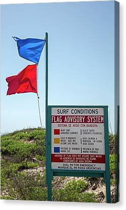 Beach Warning Flags Canvas Print by Jim West