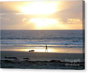 Beachcomber Encounter Canvas Print