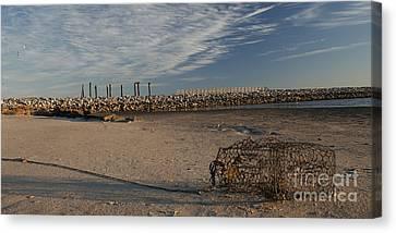 Beached Crab Basket  Canvas Print