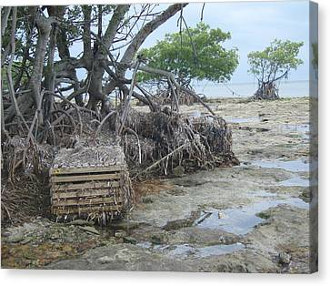 Canvas Print featuring the photograph Beached Lobster Trap by Robert Nickologianis