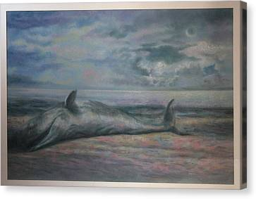 Beached Whale Canvas Print