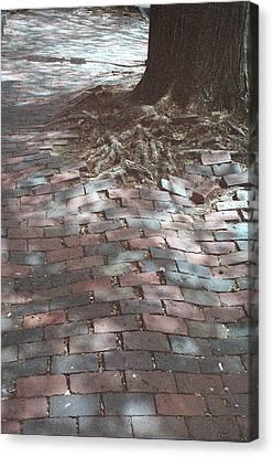 Beacon Hill Brick Canvas Print by Jill Tuinier