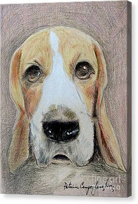 Canvas Print featuring the drawing Beagle Best In Show by Patricia Januszkiewicz