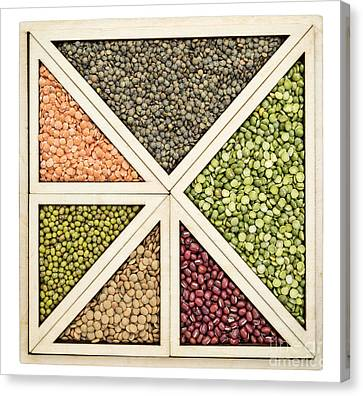 Beans And Lentils Abstract Canvas Print