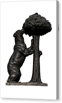 Canvas Print featuring the photograph Bear And The Madrono Tree by Fabrizio Troiani