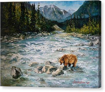 Bear Country  Canvas Print