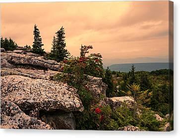Bear Rocks Sunset Canvas Print by Diana Boyd