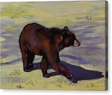 Bear Shadows Canvas Print by Pattie Wall