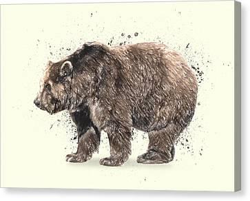 Bear Study Canvas Print by Taylan Apukovska