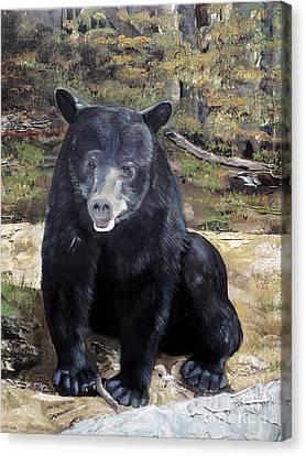 Canvas Print featuring the painting Bear - Wildlife Art - Ursus Americanus by Jan Dappen
