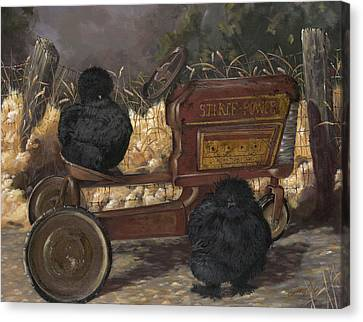 Bearded Black Silkie Bantam Pair Canvas Print by Gilda Goodwin