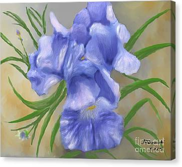 Bearded Iris Blue Iris Floral  Canvas Print by Judy Filarecki