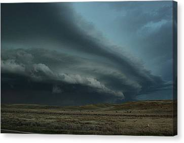Canvas Print featuring the photograph Beast In Montana by Ryan Crouse