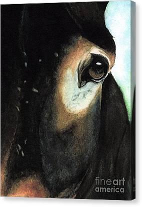 Beast Of Burden Canvas Print by Janine Riley