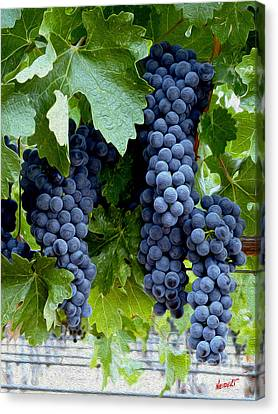Cellar Canvas Print - Beautiful Fruit by Jon Neidert