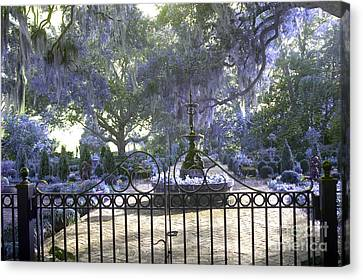 Beaufort South Carolina Dreamy Purple Lilac Garden Gates  Canvas Print by Kathy Fornal