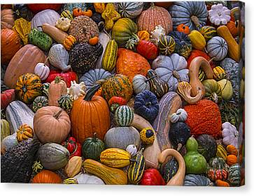 Heirlooms Canvas Print - Beautiful Autumn Harvest by Garry Gay