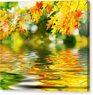 Beautiful Autumn Leaves Canvas Print by Boon Mee