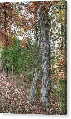 Hdr Landscape Canvas Print - Beautiful Autumn Visions by Sherri Duncan
