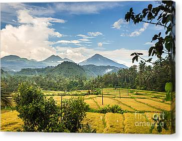 Beautiful Bali Canvas Print by Didier Marti