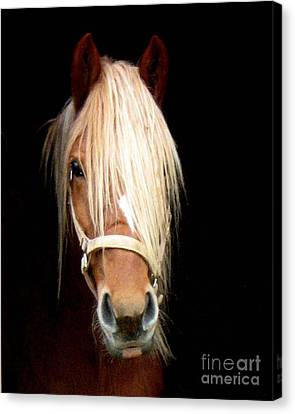 Beautiful Bella Canvas Print by Wendy Coulson