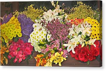 Beautiful Blooms Canvas Print by Judith Morris