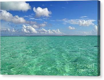 Beautiful Bora Bora Green Water And Blue Sky Canvas Print