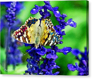 Beautiful Butterfly On A Flower Canvas Print