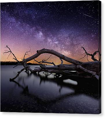 Beautiful Chaos Canvas Print by Aaron J Groen