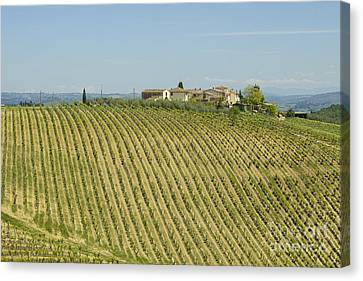 Beautiful Chianti Region In Tuscany Canvas Print by Patricia Hofmeester