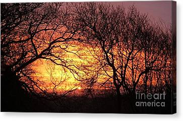 Beautiful Dawn Canvas Print by Richard Brookes